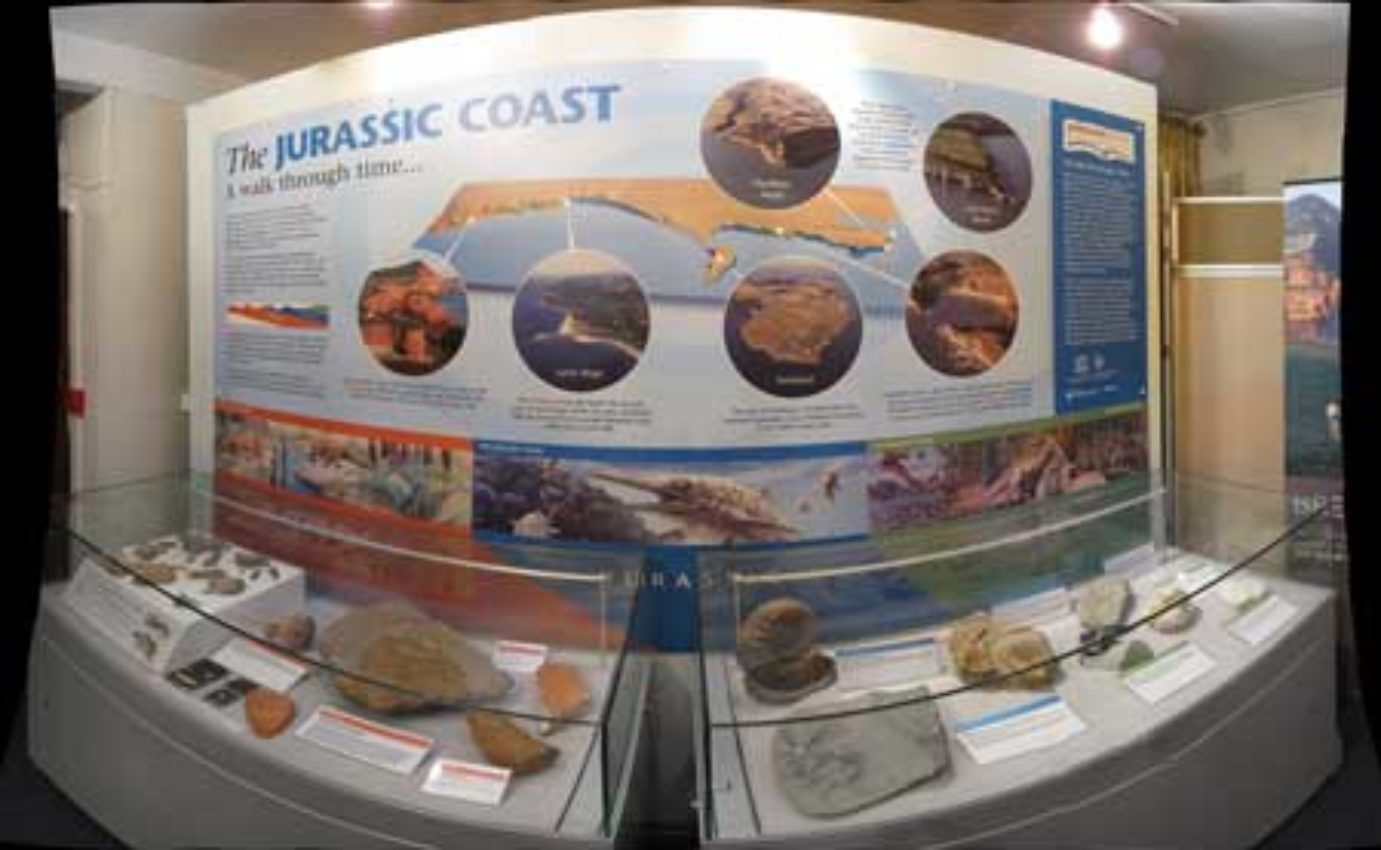 The Jurassic Life project at Sidmouth Museum.