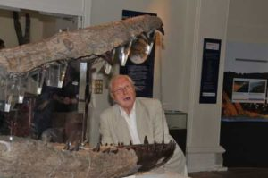 Sir David Attenborough at the unveiling of the Weymouth Bay Pliosaur fossil