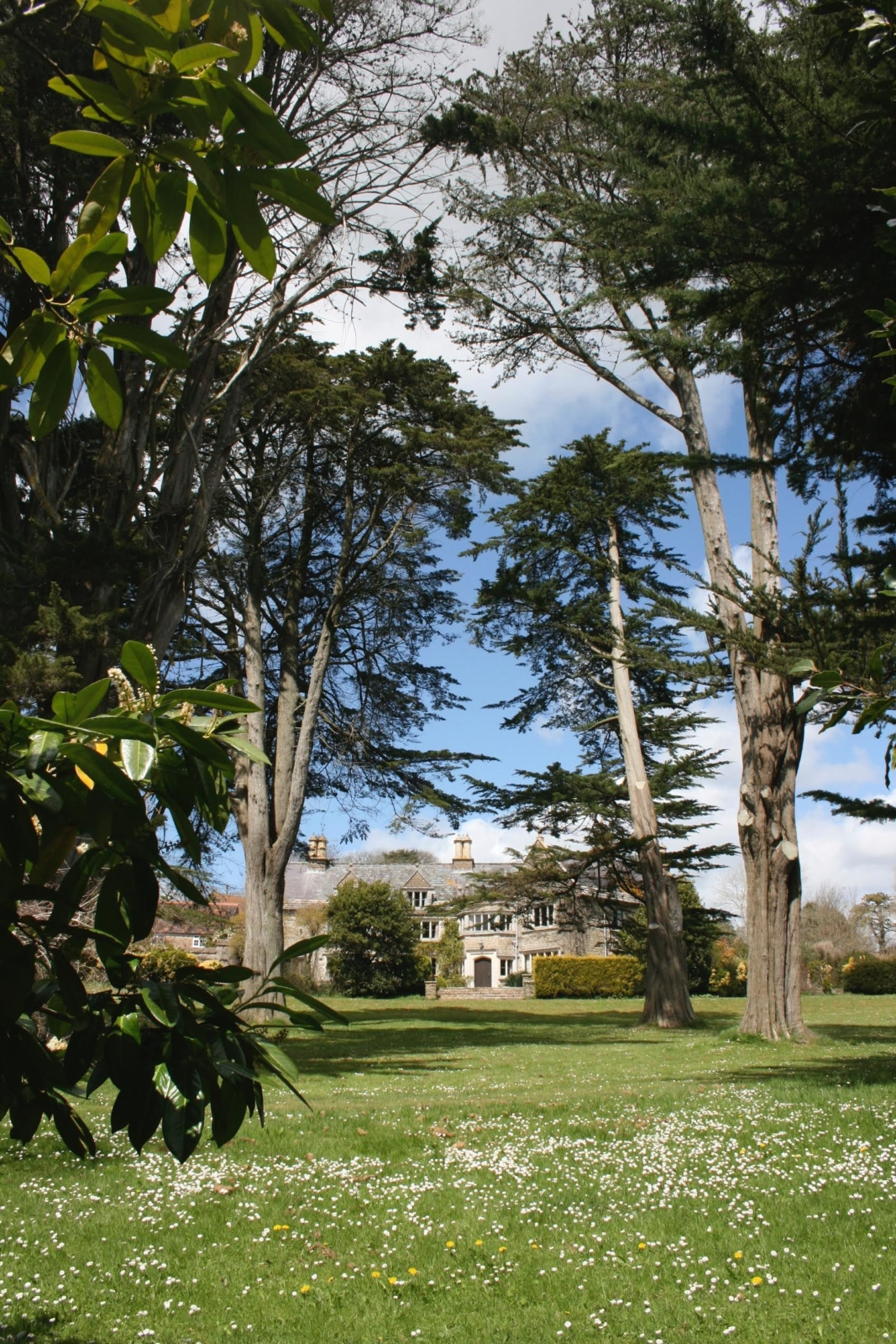 The grounds at Norburton Hall