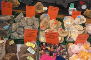 Fossils and stones for sale at the Fossil Festival