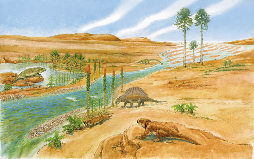Sidmouth Triassic landscape, Otter Sandstone