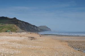 Charmouth beach is one of the best places to hunt for fossils