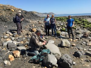 Get Fossilling on the Jurassic Coast! Come and join in with local geologists Paddy or Chris on their famous Fossil Walks along Lyme Regis