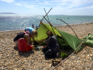 Ringstead studying seaweed