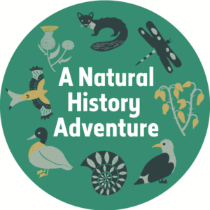 natural history adventure badge