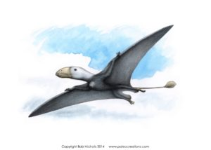 Artist's impression of a Pterosaur