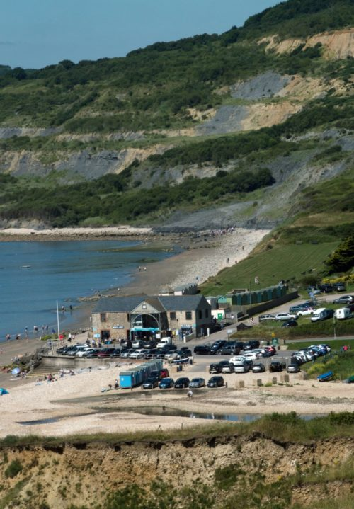 charmouth centre and fossil walk