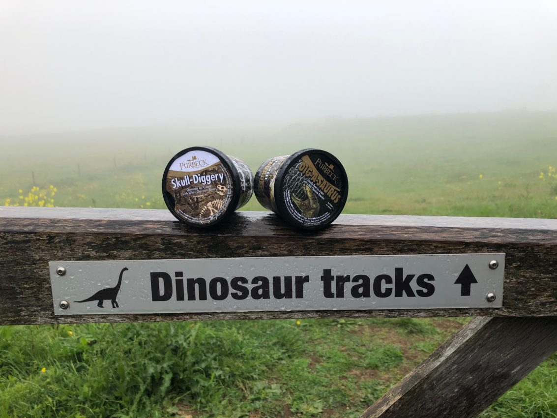 purbeck ice cream tubs dinosaur tracks sign