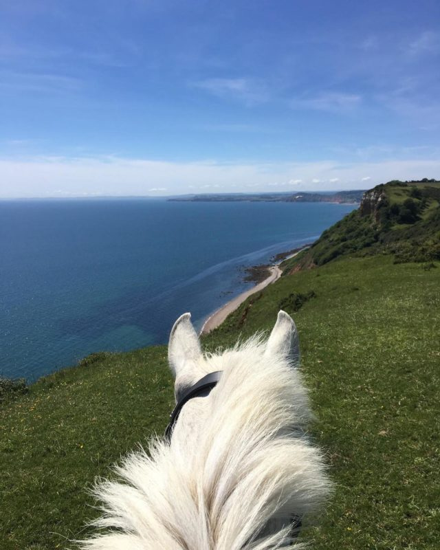 """My Jurassic Coast and a chance to go on a short virtual horse ride in East Devon with @aliceflapjack and Jack.  """"A slightly different perspective of the Jurassic Coast but I am fortunate enough to enjoy views like this on a regular basis.   What's even better is being able to experience these moments with my horses. Taking time out together on the cliff top helps clear my mind from any daily distractions and looking out to sea brings a moment of calm that simply can't be equalled.""""  #myjurassiccoast  #horsesofinstagram"""